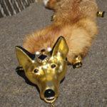 Fox fur zibellingo with gilded head
